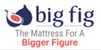 Big Fig logo