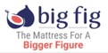 Big Fig's Logo