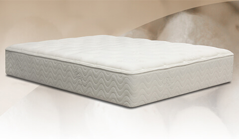 Nest Bedding Mattress Store Reviews GoodBed