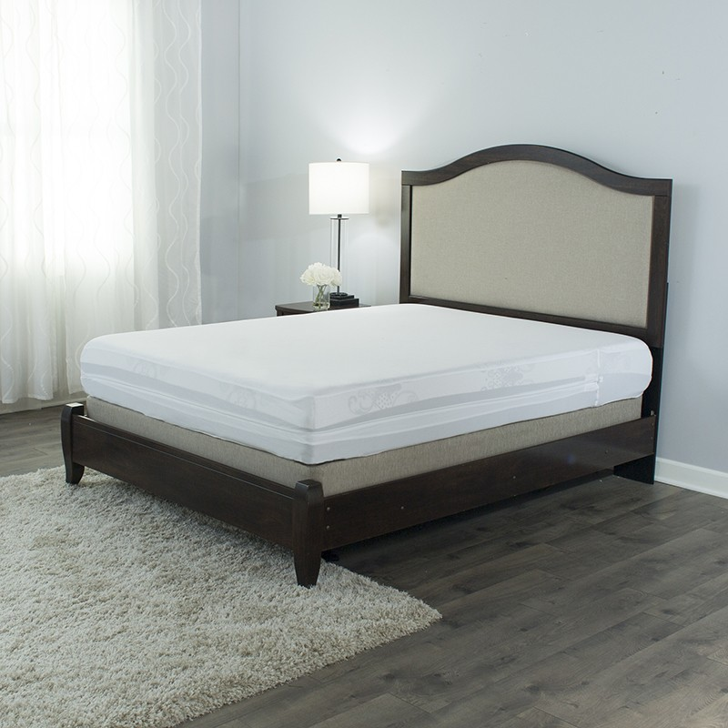 Protect A Bed Bed Bug Proof 10 Inch Memory Foam Mattress Reviews