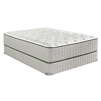 Spring air back supporter sadie firm mattress reviews for Spring air mattress